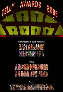 9th Indian Telly Awards (2009)